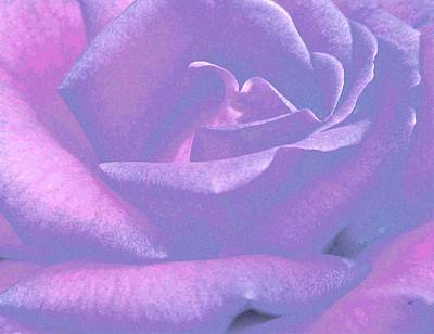 Floral Digital Art Mixed Media - Winsome Rose 1 by Will Borden