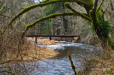 Photograph - Winston Creek by Ansel Price