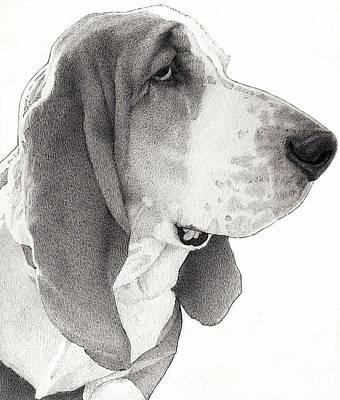 Police Dog Drawing - Winston by Lorraine Zaloom