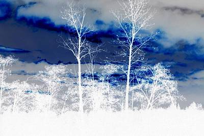 Photograph - Winter Abstract by Frank Townsley