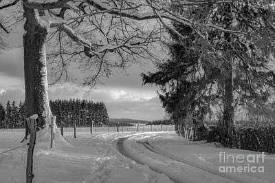 Winterscape Black And White Photograph - Winter Afternoon In Ardennes Bw by Sinisa CIGLENECKI