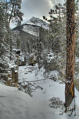 Photograph - Winter Along Beauty Creek by Adam Jewell