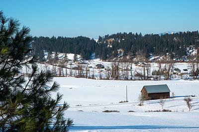 Photograph - Winter Along Sauk Creek by Tom Cochran