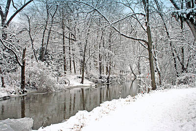Photograph - Winter Along The Riverbank by Kay Novy