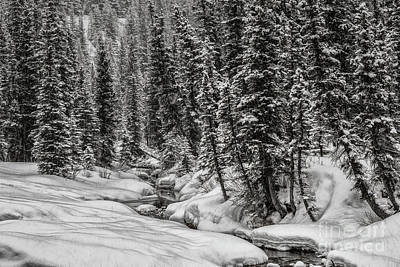 Winter Alpine Creek II Art Print