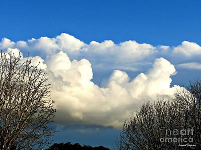 Photograph - Winter And Clouds by Leanne Seymour