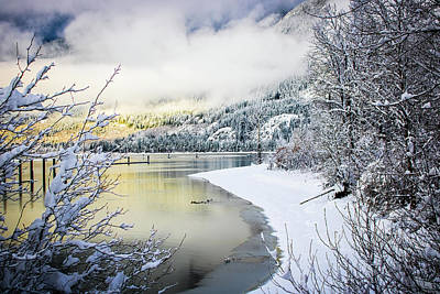 Photograph - Winter Artistry  by Christina Dutkowski