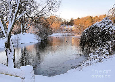 Photograph - Winter At Jenney Pond by Janice Drew