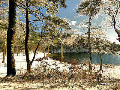 Photograph - Winter At Morton Park by Janice Drew
