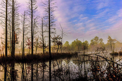 New Jersey Pine Barrens Photograph - Winter At Quaker Bridge by Louis Dallara