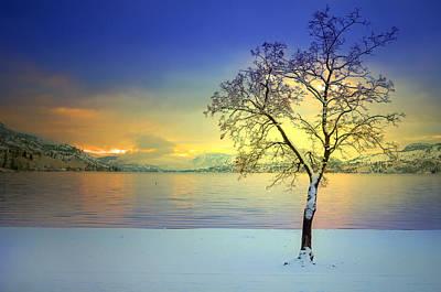 Skaha Lake Photograph - Winter At Skaha Beach by Tara Turner