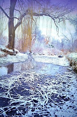 Winter At Skaha Lake Park Art Print
