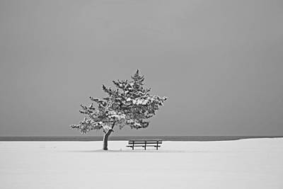 Photograph - Winter At The Beach by Karol Livote