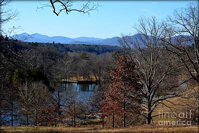 Photograph - Winter At The Biltmore by Janice Spivey
