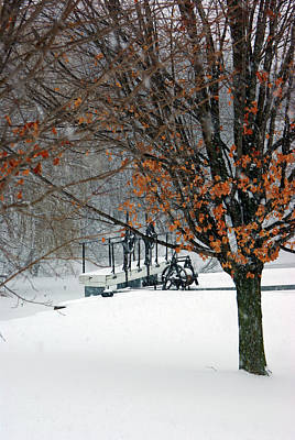 Winter At The Locks Art Print