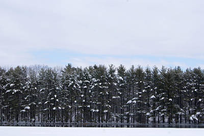 Photograph - Winter At The Reservoir by Margie Avellino
