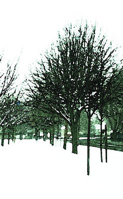 Photograph - Winter Avenue by Anne Kotan