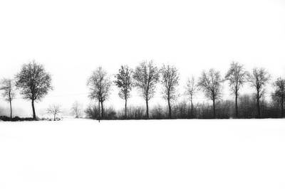 Winter Bareness Print by Silvia Ganora