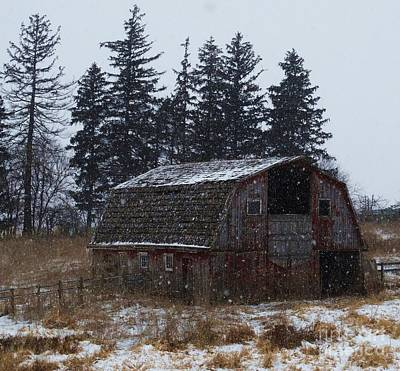 Photograph - Winter Barn Beauty by J L Zarek