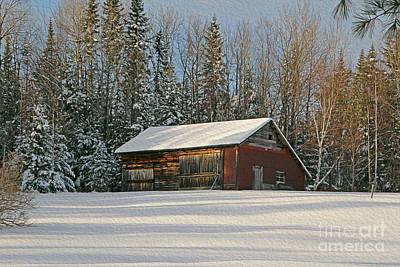 Winter Barn Art Print by Cheryl Aguiar