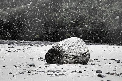 Photograph - Winter Beach by Bonnie Bruno