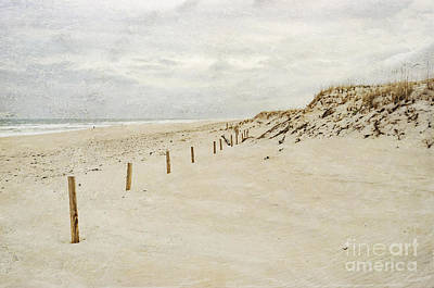 Photograph - Winter Beach I by Debra Fedchin