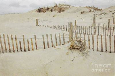 Photograph - Winter Beach II by Debra Fedchin