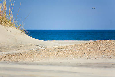 Photograph - Winter Beach Outer Banks by Joni Eskridge