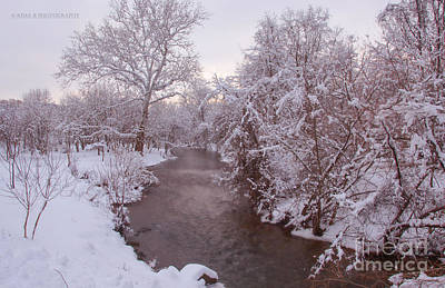 Photograph - Winter Beauty by Rima Biswas
