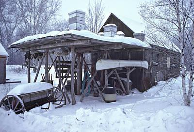 Photograph - Winter Beeyard by Bernard Lynch