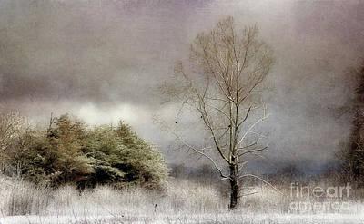 Winter Beginning Art Print by Michael Eingle