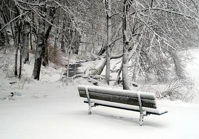 Photograph - Winter Bench by Suzanne DeGeorge