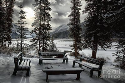 Photograph - Winter Benches By Beauty Creek by Adam Jewell