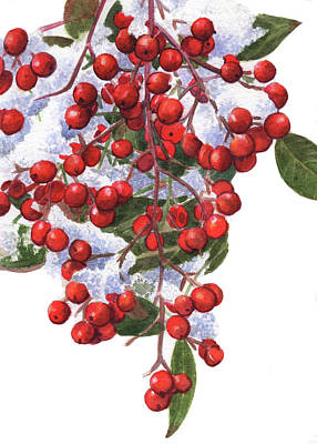 Painting - Winter Berries by Swati Singh
