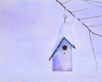 Photograph - Winter Birdhouse  by Theresa Tahara