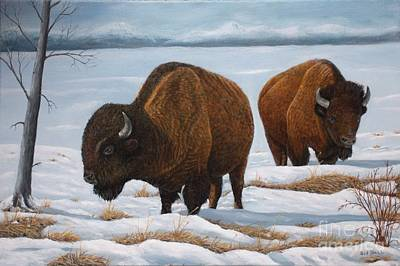 Oil Painting - Winter Bison by Sid Ball