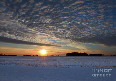Photograph - Winter Blue by Charles Owens