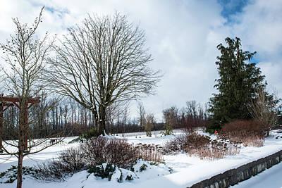 Photograph - Winter Blue Sky Peeking by Tom Cochran