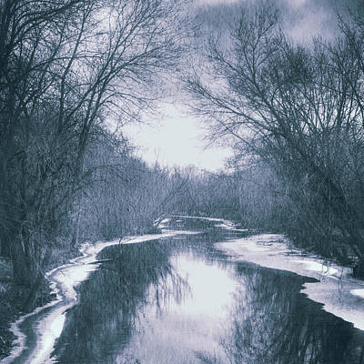 Photograph - Winter Blues by Angela King-Jones