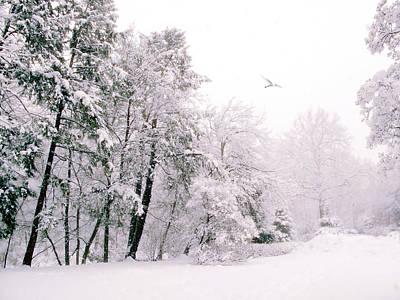 Snow Landscape Digital Art - Winter White by Jessica Jenney