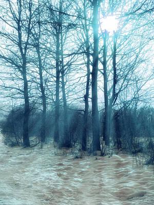 Photograph - Winter Blues by Wim Lanclus