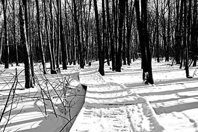 Photograph - Winter Boardwalk In Black And White by Debbie Oppermann