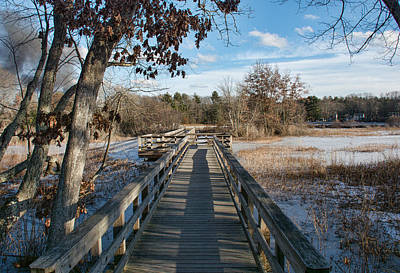 Photograph - Winter Boardwalk by John Black