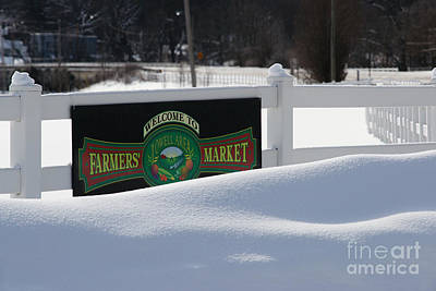 Snow Banks Photograph - Winter Break by Linda Shafer