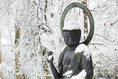 Photograph - Winter Buddha by Tim Gainey