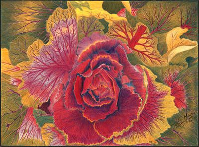 Cabbage Mixed Media - Winter Cabbage In Bloom by James  Mingo
