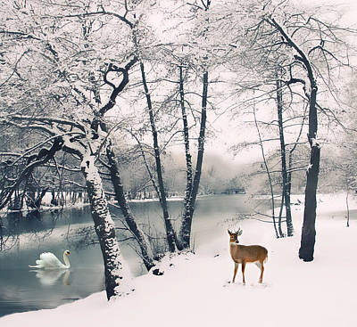 White River Digital Art - Winter Calls by Jessica Jenney
