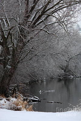 Waterscapes Photograph - Winter Calm by Carol Groenen