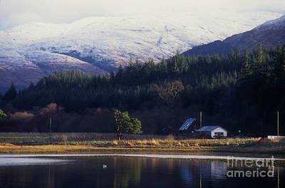 Photograph - Winter Calm - Loch Creran by Phil Banks