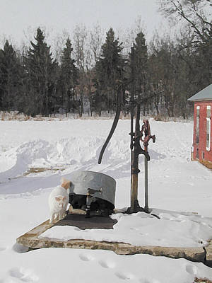 Winter Cat At The Pump Art Print by Laurie With
